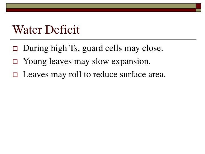 Water Deficit