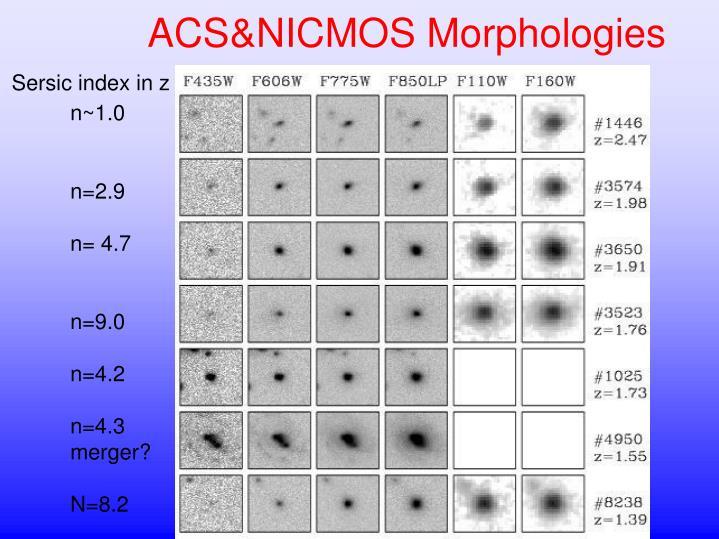 ACS&NICMOS Morphologies