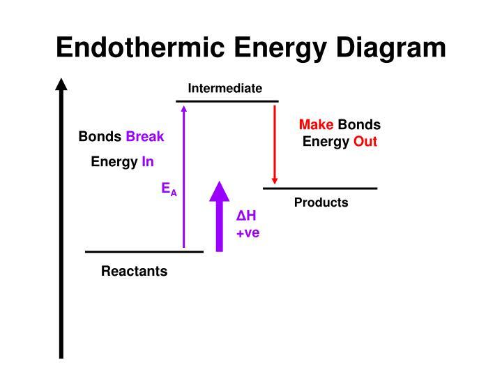 Endothermic Energy Diagram