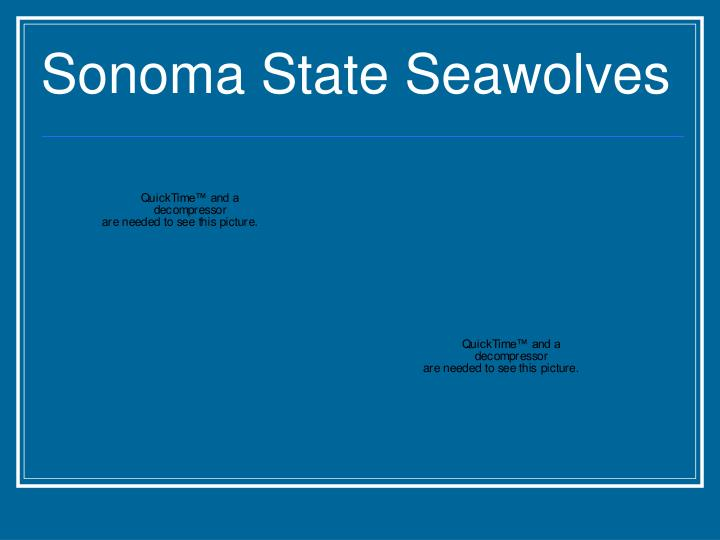Sonoma State Seawolves