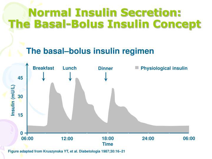 Normal Insulin Secretion: