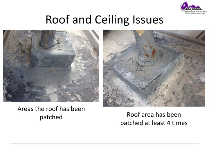 Roof and Ceiling Issues