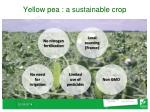 yellow pea a sustainable crop
