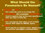 what should the parameters be named