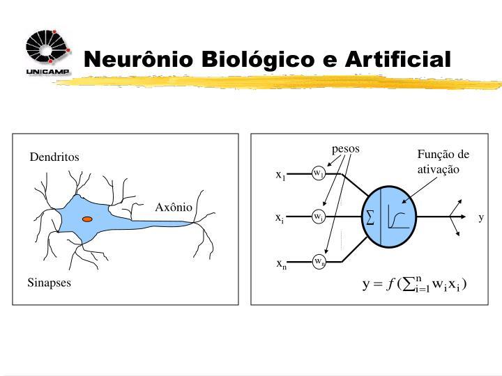 Neurônio Biológico e Artificial