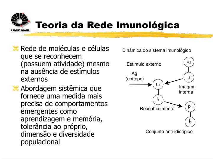 Teoria da Rede Imunológica