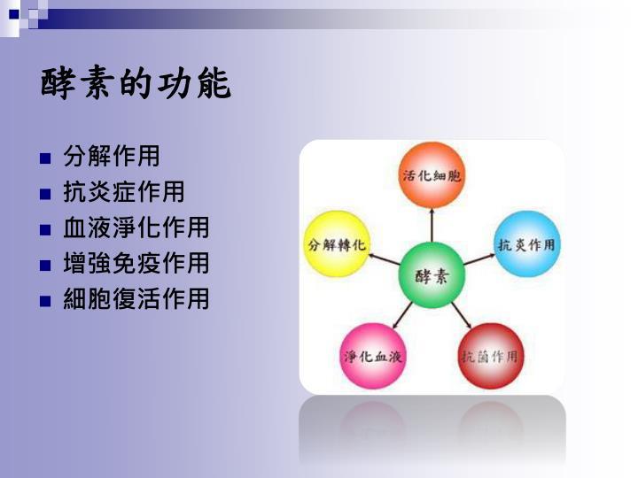 酵素的功能