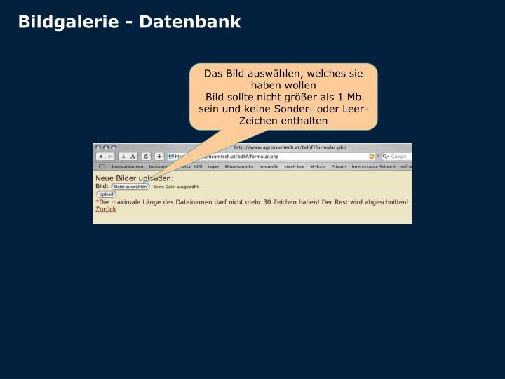 Bildgalerie - Datenbank