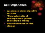 cell organelles3