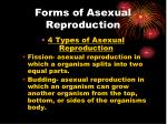 forms of asexual reproduction