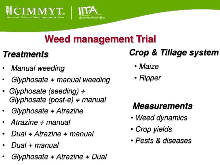 Weed management Trial