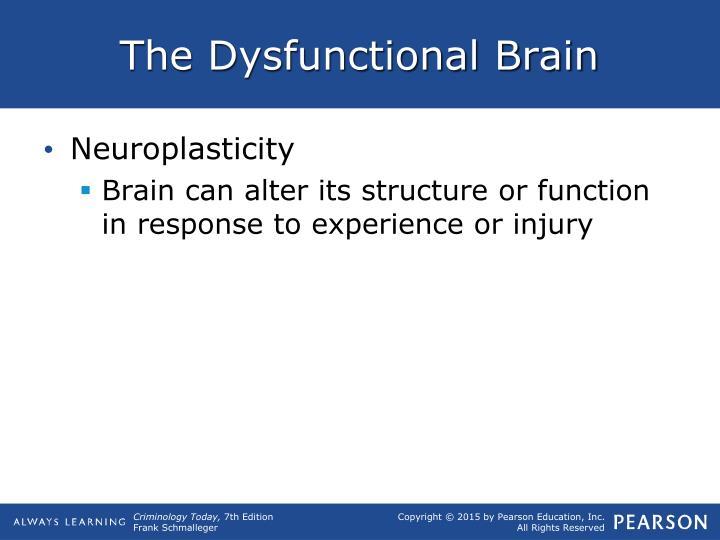 The Dysfunctional Brain