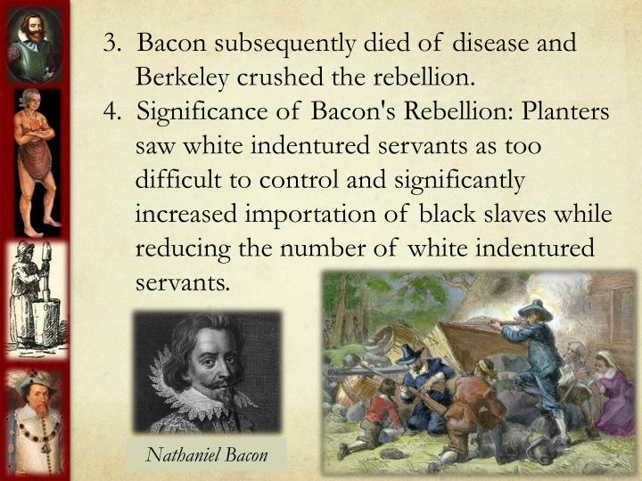indentured servants vs black slaves