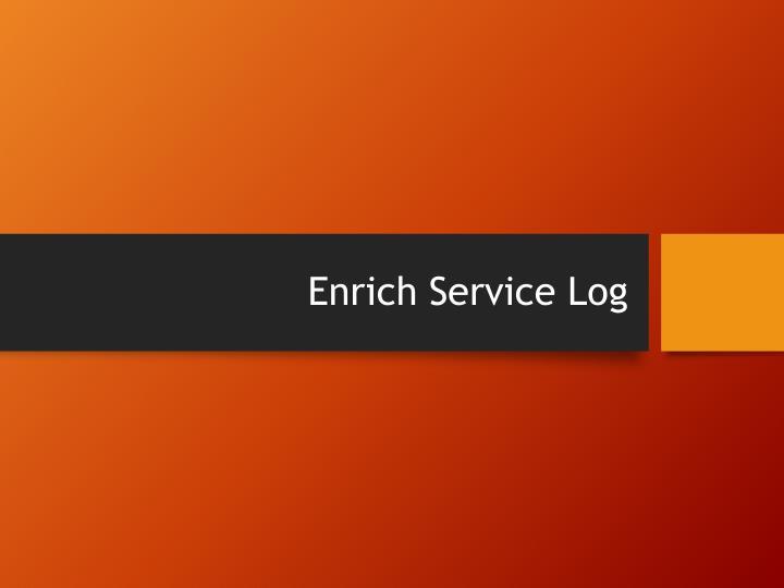 Enrich Service Log