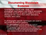 documenting bloodstain evidence