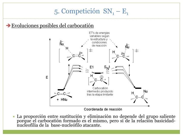 5. Competición  SN
