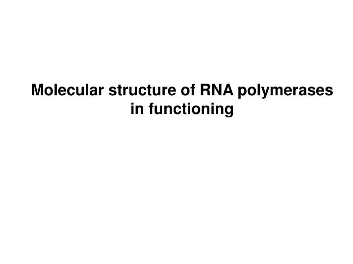 Molecular structure of RNA polymerases