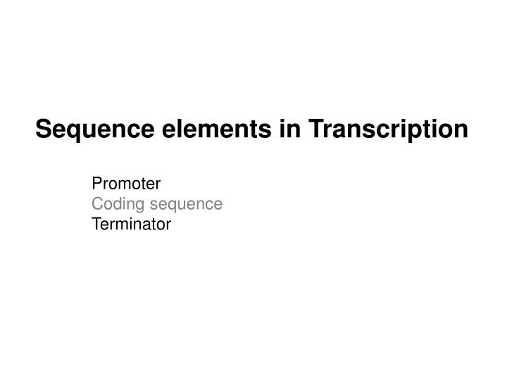 Sequence elements in Transcription