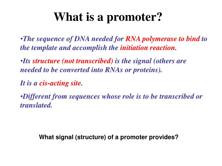 What is a promoter