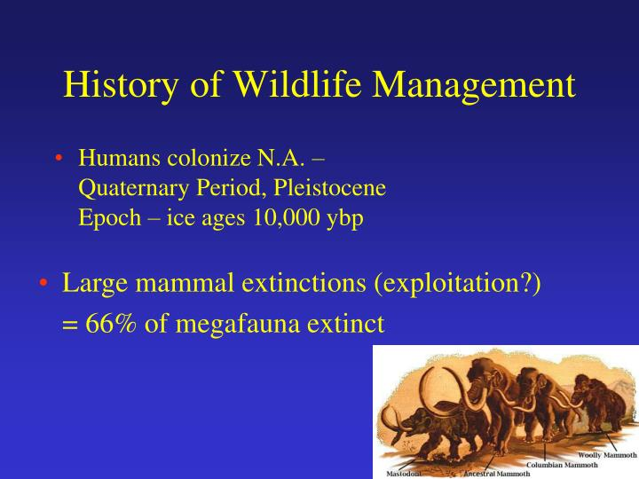 Ppt history of wildlife management powerpoint presentation, free.