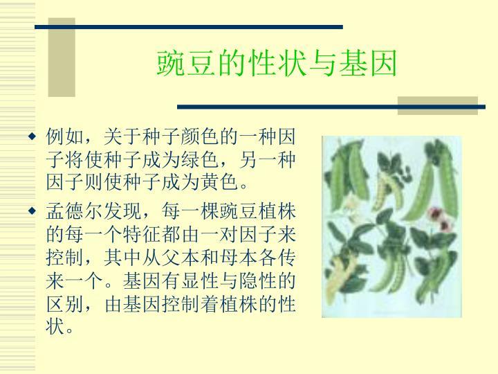 豌豆的性状与基因