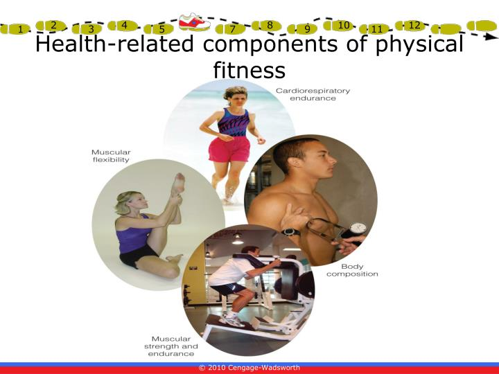 PPT - Chapter 1 Physical Fitness & Wellness PowerPoint ...