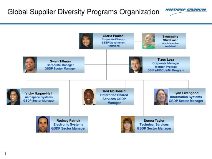 diversity in a global organization They draw on the benefits of international diversity, bringing together people from many cultures with varied work experiences and different perspectives on strategic and organizational challenges.