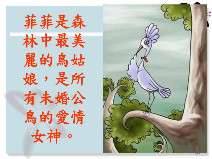 菲菲是森林中最美麗的鳥姑娘,是所有未婚公鳥的愛情女神。