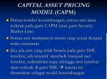 capital asset pricing model capm1
