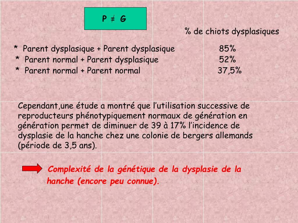 PPT - Héritabilité de la dysplasie de la hanche chez le ...