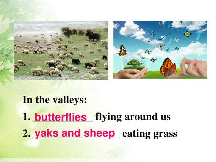 In the valleys: