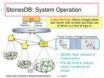 stonesdb system operation