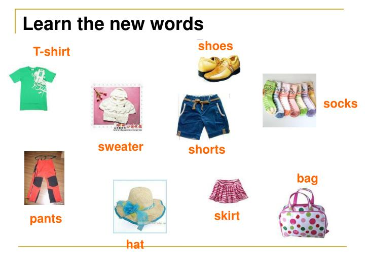 Learn the new words