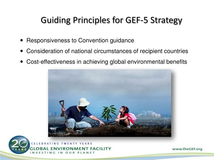 Guiding Principles for GEF-5 Strategy
