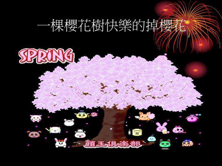 一棵櫻花樹快樂的掉櫻花
