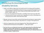 intellectual developmental disability services