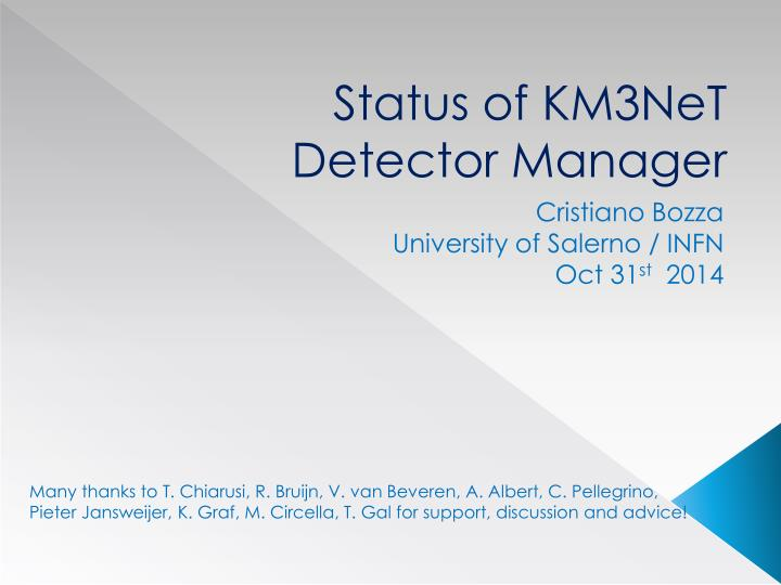status of km3net detector manager