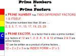 prime numbers prime factors