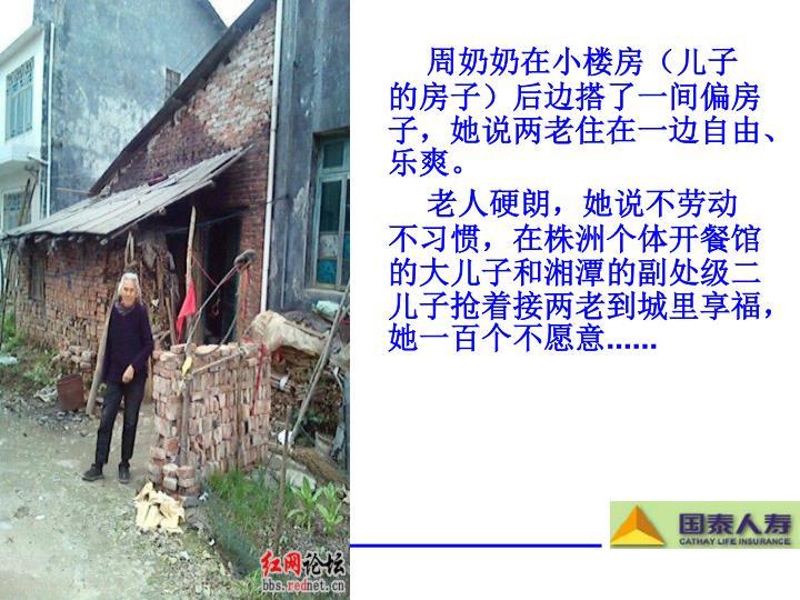 周奶奶在小楼房(儿子的房子)后边搭了一间偏房子,她说两老住在一边自由、乐爽。