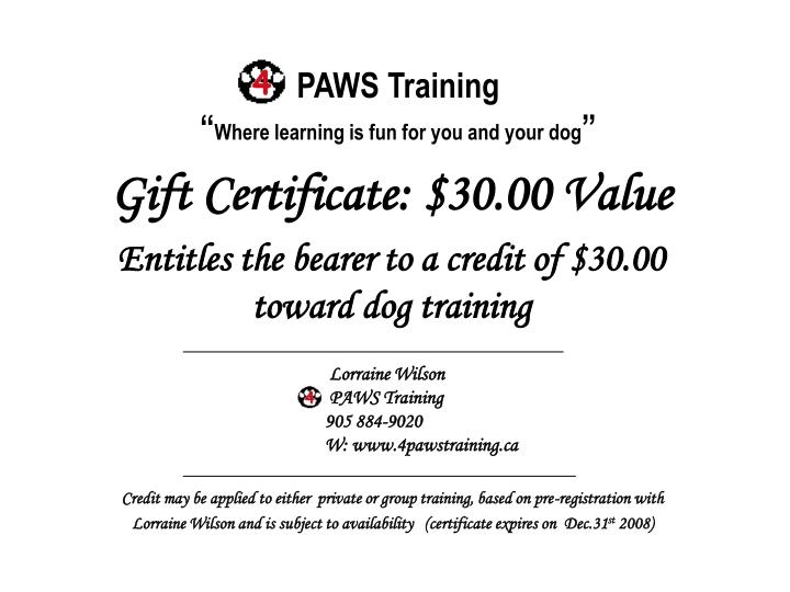 Paws training where learning is fun for you and your dog