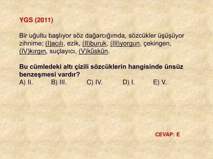 YGS (2011)