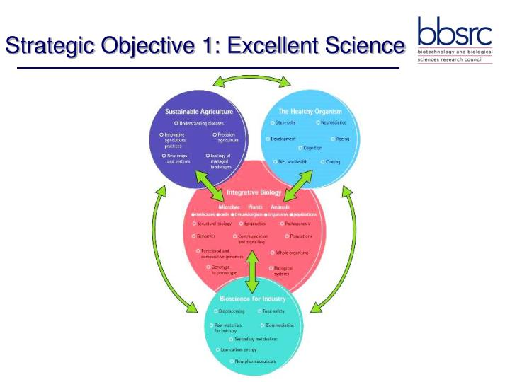 Strategic Objective 1: Excellent Science