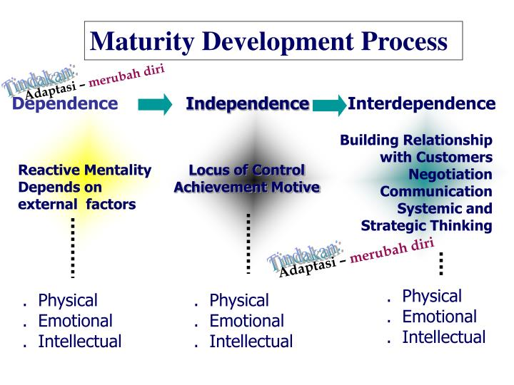 Maturity Development Process