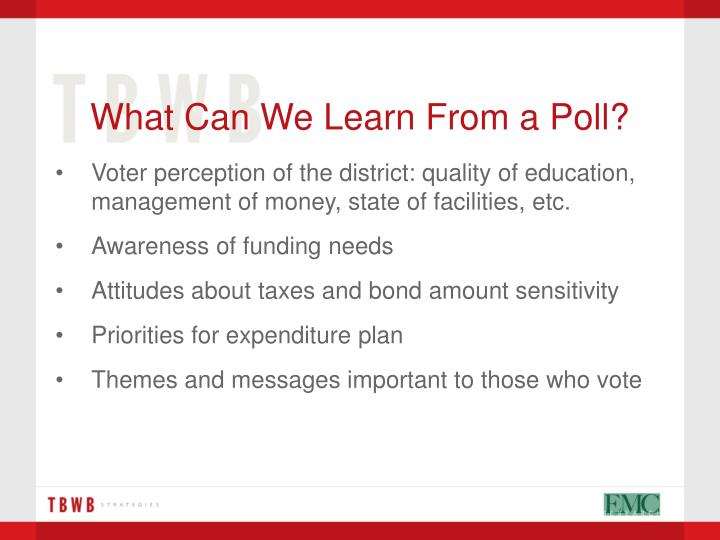 What Can We Learn From a Poll?