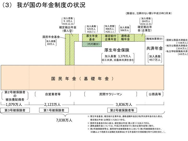 (3) 我が国の年金制度の状況