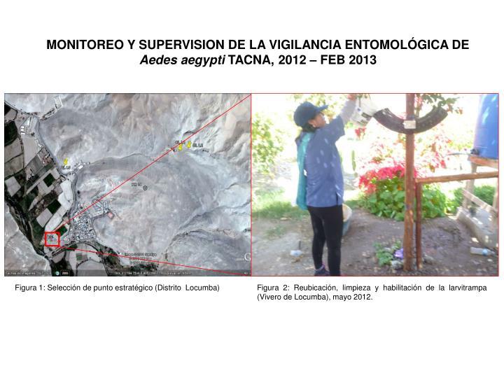 MONITOREO Y SUPERVISION DE LA VIGILANCIA ENTOMOLÓGICA DE