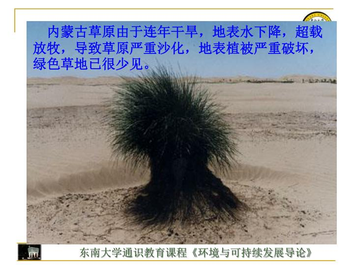 内蒙古草原由于连年干旱,地表水下降,超载放牧,导致草原严重沙化,地表植被严重破坏,绿色草地已很少见。