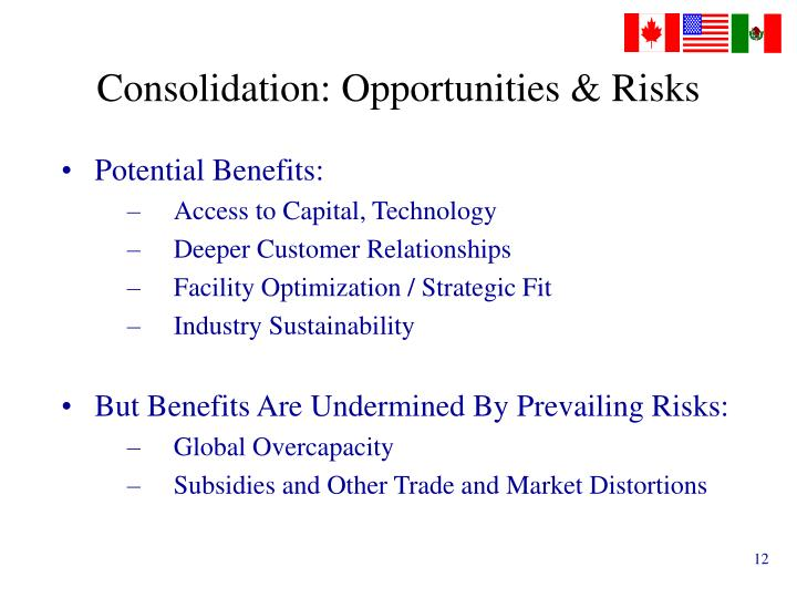 Consolidation: Opportunities & Risks