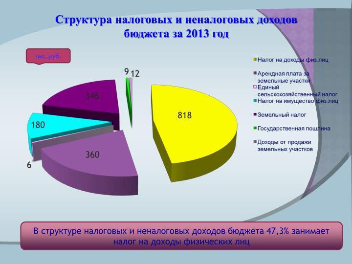 Структура налоговых и неналоговых доходов бюджета за 2013 год