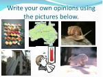 write your own opinions using the pictures below1